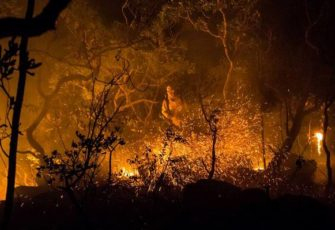 Arson is destroying one of Brazil's largest natural reserves Chapada dos Veadeiros