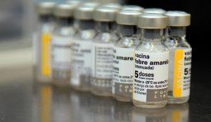 brazil yellow fever outbreak