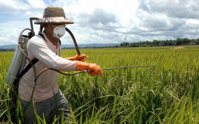 pesticides brazil