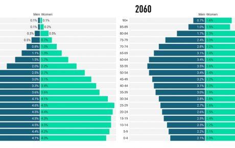 population pyramid brazil 2060