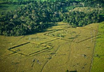 amazon brazilian history