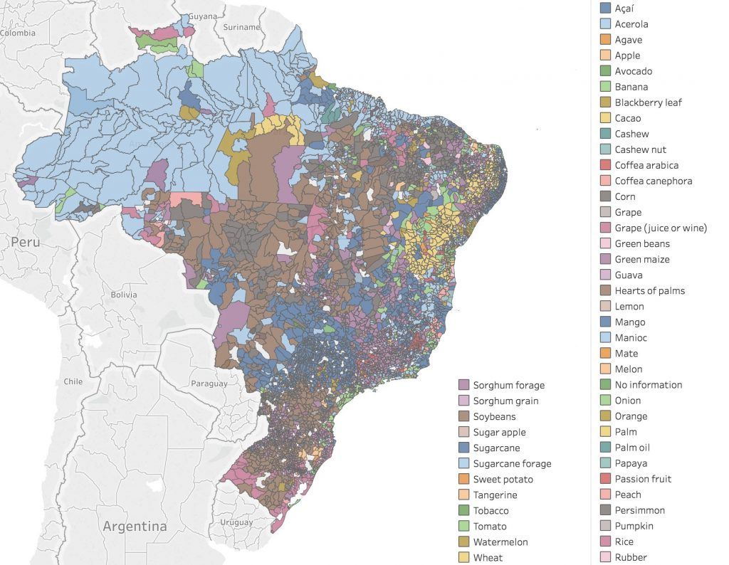 crops brazil total agricultural production