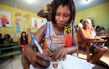 indigenous schools illiteracy brazil land rights