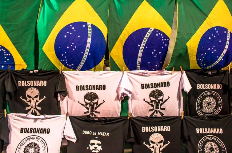 bolsonaro science fascism