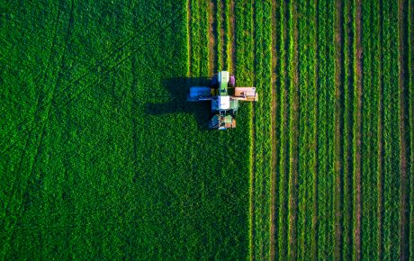 Brazil's big agro revenue to stall in 2019