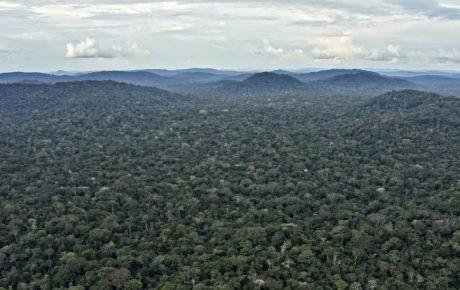 indigenous land rondonia