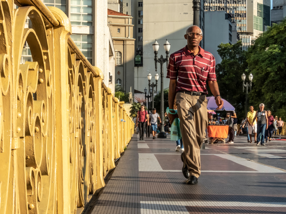 brazilian population changes