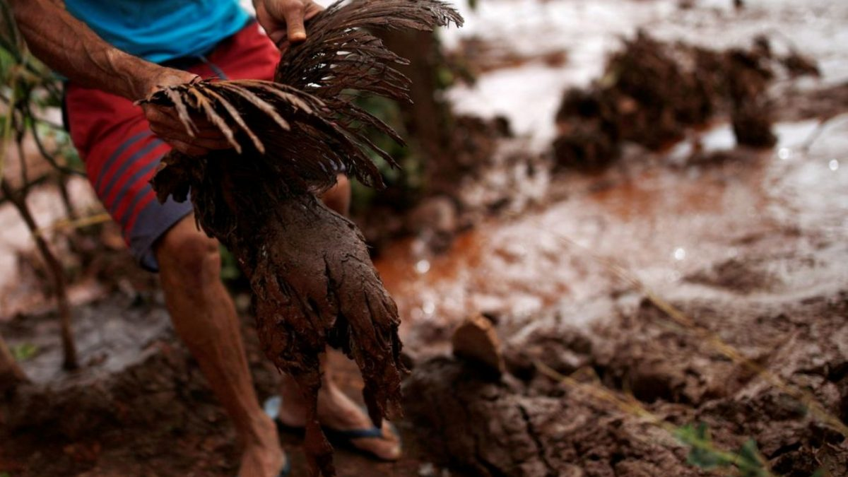 Brumadinho Investigation Could Lead To Murder Charge For