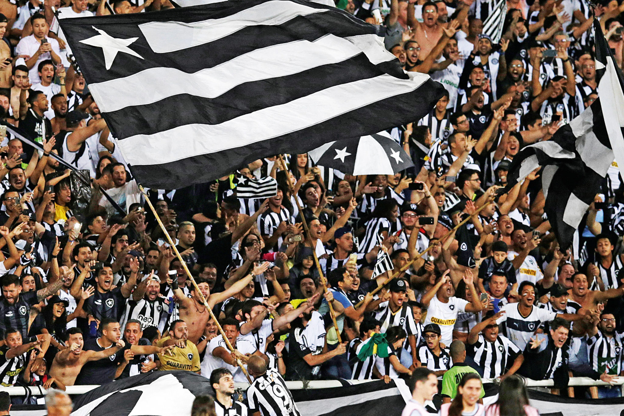 Image result for Botafogo FC team""