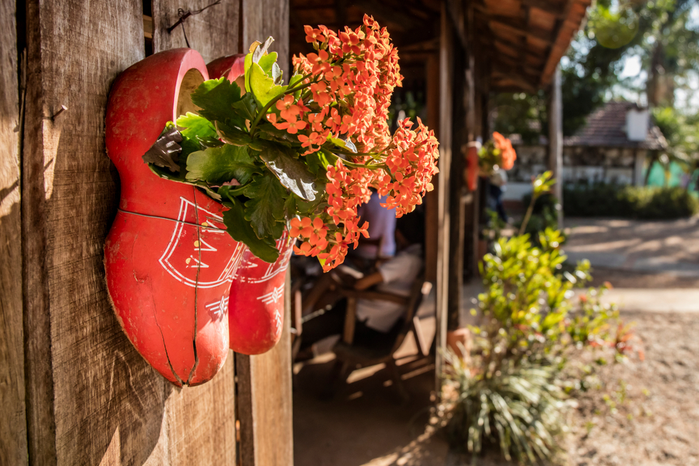 holambra netherlands brazil flower capital tourism