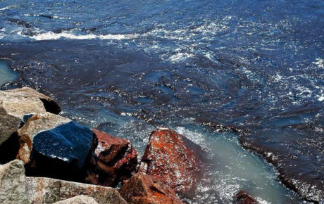 Northeast oil spills pose new environmental headache for Brazil