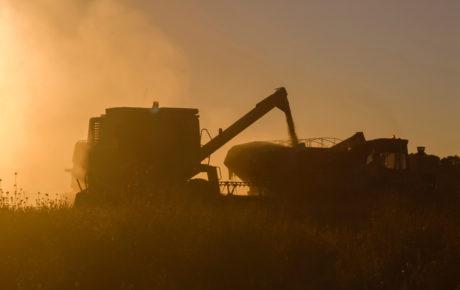 agribusiness argentina