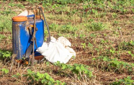 pesticide use brazil