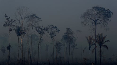 Evangelicals in Brazil see abuse of God's earth as a sin – but will they fight to save the Amazon?