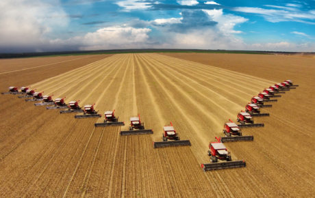 Monsanto soybeans brazil