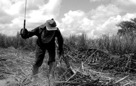 modern slavery brazil podcast