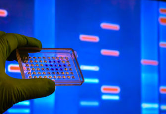 Tech Roundup Dec. 13, 2019 | Brazil's promising genome project