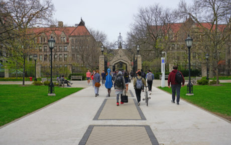 University of Chicago brazilian