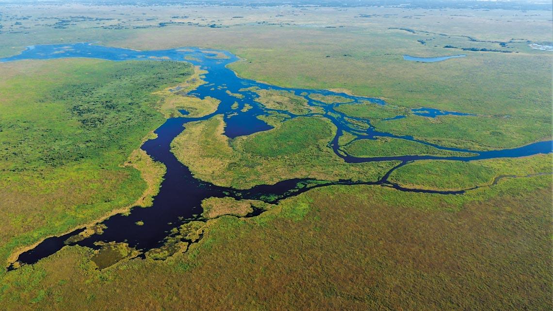 pantanal scenery