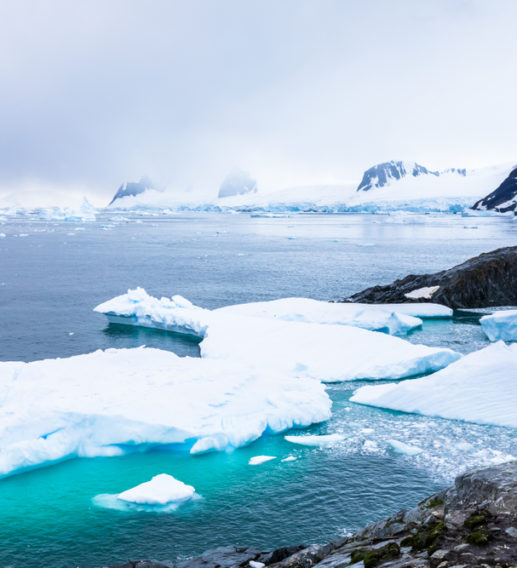 antarctica brazil