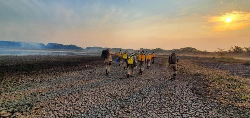 Pantanal demitido Brasil