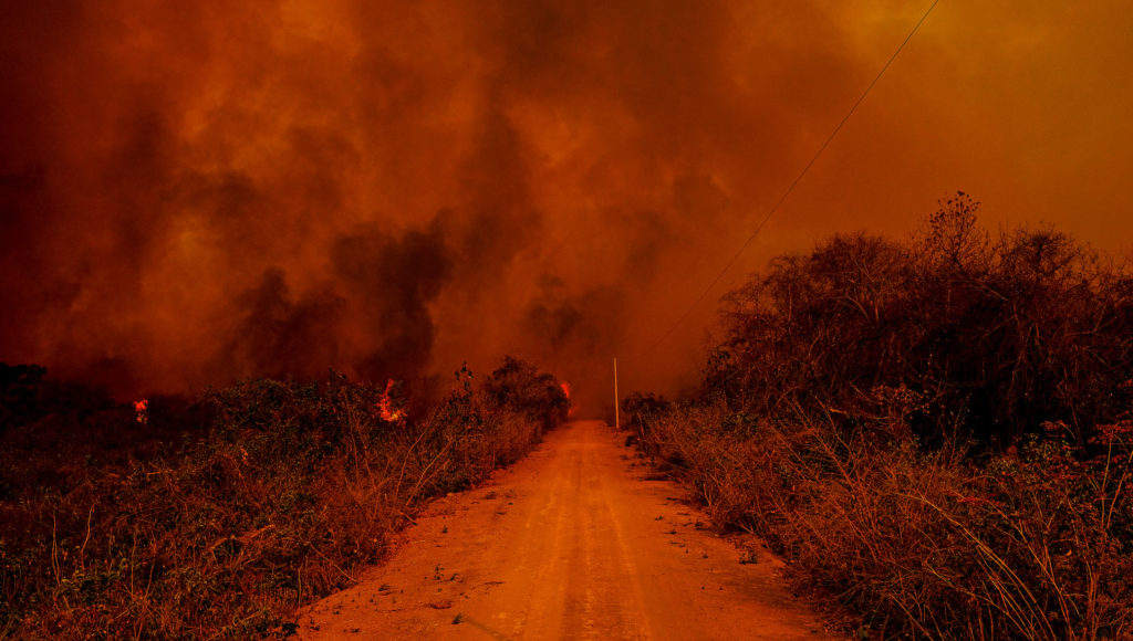 Pantanal queima desmatamento